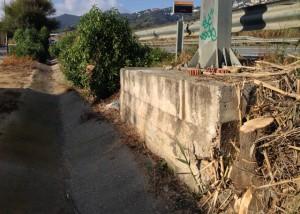 La solució no arriba. La concessionària ACESA ha esporgat la vegetació. Foto: carlespascual.cat