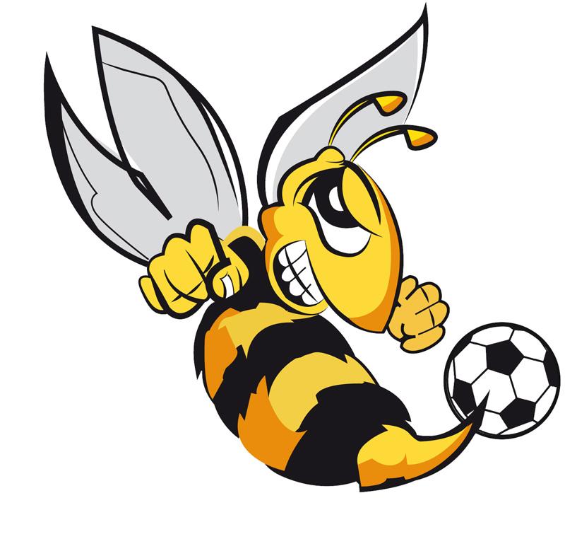 L'abella és la mascota de TecSoccer