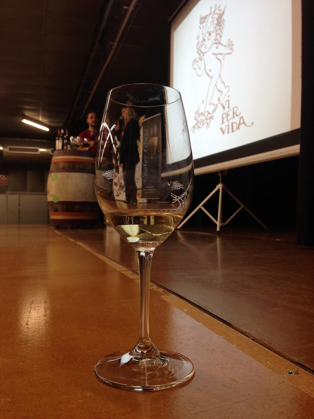 'Vi per vida', tast solidari de vins per ajudar en la investigació contra la metàstasi. Foto: carlespascual.cat